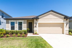 Photo of 11218 Spring Point Circle, RIVERVIEW, FL 33579 (MLS # T3169273)