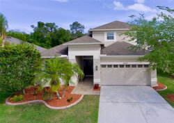 Photo of 14307 Sky Flower Lane, TAMPA, FL 33626 (MLS # T3169282)