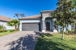 Photo of 11858 Frost Aster Drive, RIVERVIEW, FL 33579 (MLS # T3169347)