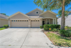Photo of 5835 Butterfield St, RIVERVIEW, FL 33578 (MLS # T3169587)