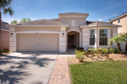 Photo of 8715 Deep Maple Drive, RIVERVIEW, FL 33578 (MLS # T3169798)