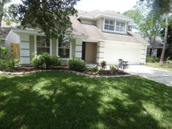 Photo of 14510 Clifty Court, TAMPA, FL 33624 (MLS # T3169844)