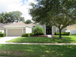 Photo of 2308 Fountain Grass Drive, VALRICO, FL 33594 (MLS # T3169963)