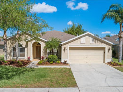 Photo of 19103 Wind Dancer Street, LUTZ, FL 33558 (MLS # T3170235)