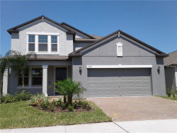 Photo of 13407 Orca Sound Drive, RIVERVIEW, FL 33579 (MLS # T3170365)