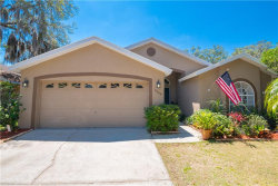 Photo of 6804 Silver Branch Court, TAMPA, FL 33625 (MLS # T3170697)