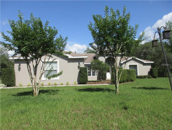 Photo of 14032 Sloan Court, SPRING HILL, FL 34610 (MLS # T3173858)