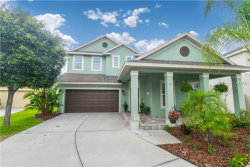 Photo of 8205 Nectar Ridge Court, ODESSA, FL 33556 (MLS # T3174158)