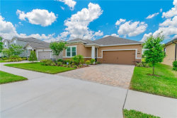 Photo of 12371 Streambed Drive, RIVERVIEW, FL 33579 (MLS # T3174451)