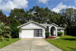 Photo of 8103 Rhanbuoy Road, SPRING HILL, FL 34606 (MLS # T3175250)
