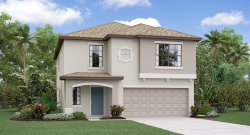 Photo of 5137 Sable Chime Drive, WIMAUMA, FL 33598 (MLS # T3175706)