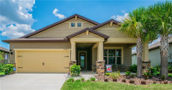 Photo of 16341 Treasure Point Drive, WIMAUMA, FL 33598 (MLS # T3175799)