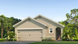 Photo of 10219 Geese Trail Circle, SUN CITY CENTER, FL 33573 (MLS # T3175935)
