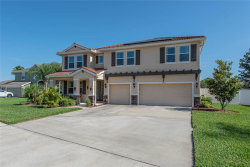 Photo of 11812 Newberry Grove Loop, RIVERVIEW, FL 33579 (MLS # T3176143)