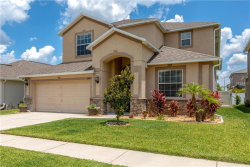 Photo of 3640 Morgons Castle Court, LAND O LAKES, FL 34638 (MLS # T3176145)