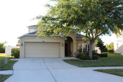 Photo of 9109 Lost Mill Drive, LAND O LAKES, FL 34638 (MLS # T3176428)