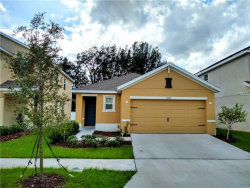 Photo of 10125 Geese Trail Circle, SUN CITY CENTER, FL 33573 (MLS # T3176693)