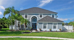 Photo of 10413 Rocky River Court, TAMPA, FL 33647 (MLS # T3176796)