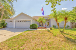 Photo of 9202 Grand Palm Court, RIVERVIEW, FL 33578 (MLS # T3177298)