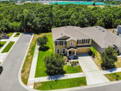 Photo of 11623 Storywood Drive, RIVERVIEW, FL 33578 (MLS # T3178491)