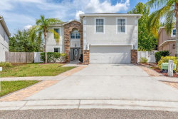 Photo of 17116 Odessa Road, LAND O LAKES, FL 34638 (MLS # T3178868)