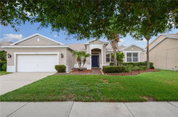 Photo of 11812 Holly Creek Drive, RIVERVIEW, FL 33569 (MLS # T3180766)