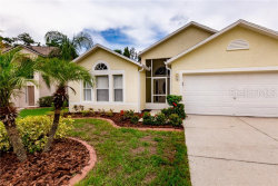 Photo of 4708 Bear Claw Court, VALRICO, FL 33594 (MLS # T3181101)