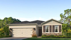 Photo of 12492 Eastpointe Drive, DADE CITY, FL 33525 (MLS # T3181215)
