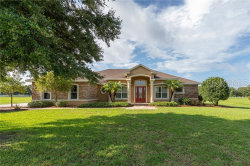 Photo of 9720 Preakness Stakes Way, DADE CITY, FL 33525 (MLS # T3181804)