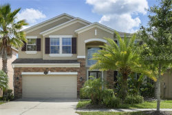Photo of 10776 Pictorial Park Drive, TAMPA, FL 33647 (MLS # T3182867)