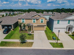 Photo of 204 English Heritage Place, DOVER, FL 33527 (MLS # T3183813)