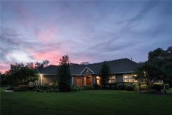 Photo of 32631 Timber Hill Drive, DADE CITY, FL 33523 (MLS # T3184258)