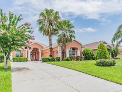 Photo of 13342 Trailing Moss Drive, DADE CITY, FL 33525 (MLS # T3185824)