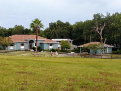 Photo of 15932 Old Mill Pond Road, DADE CITY, FL 33523 (MLS # T3185930)