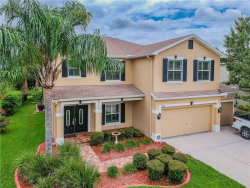 Photo of 5830 Candytuft Place, LAND O LAKES, FL 34639 (MLS # T3186564)