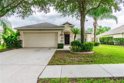 Photo of 2639 Queen Alberta Drive, VALRICO, FL 33596 (MLS # T3186579)