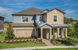 Photo of 13059 Payton Street, ODESSA, FL 33556 (MLS # T3186739)