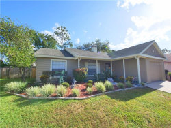 Photo of 4613 S Country Hills Court, PLANT CITY, FL 33566 (MLS # T3186803)