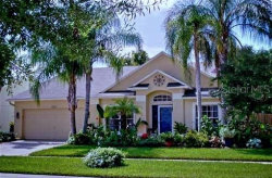 Photo of 9731 Bay Colony Drive, RIVERVIEW, FL 33578 (MLS # T3186889)