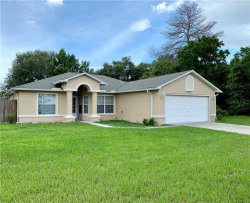 Photo of 5035 Abagail Drive, SPRING HILL, FL 34608 (MLS # T3187008)