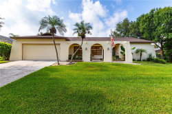 Photo of 2311 Long Green Court, VALRICO, FL 33596 (MLS # T3187031)