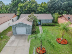 Photo of 11509 Paperwood Place, RIVERVIEW, FL 33569 (MLS # T3187163)