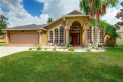 Photo of 9229 Hidden Water Circle, RIVERVIEW, FL 33578 (MLS # T3187307)