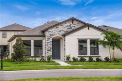 Photo of 12405 Streambed Drive, RIVERVIEW, FL 33579 (MLS # T3187516)