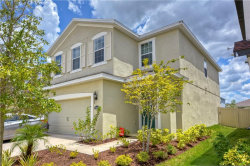 Photo of 11139 Abaco Island Avenue, RIVERVIEW, FL 33579 (MLS # T3188195)