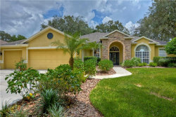 Photo of 5729 Eaglemount Circle, LITHIA, FL 33547 (MLS # T3191450)