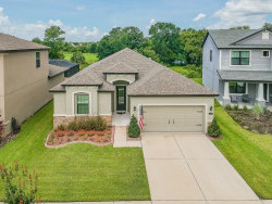 Photo of 850 Vino Verde Circle, BRANDON, FL 33511 (MLS # T3192608)