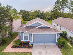 Photo of 21400 Morning Mist Way, LAND O LAKES, FL 34637 (MLS # T3192950)