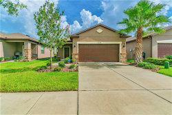 Photo of 8348 Red Spruce Avenue, RIVERVIEW, FL 33578 (MLS # T3192972)