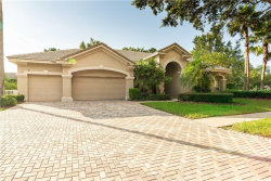 Photo of 9204 Highland Ridge Way, TAMPA, FL 33647 (MLS # T3193137)